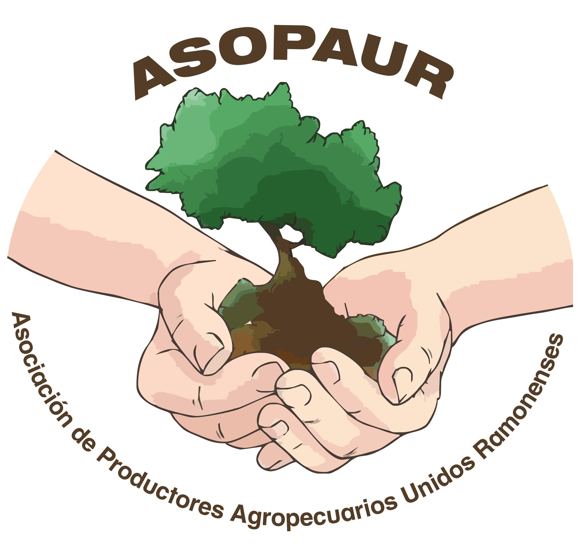 ASOPAUR, es una asociación de productores agropecuarios sin fines de lucro, constituida en el año 2010, con sus respectivos estatus inscritos, se trabaja de forma paralela al seccional UPA San Ramón y Consejo de secciones del Central Pacifico de UPA.